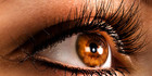 $29 for a Full Set of Glamorous or Natural Eyelash Extensions & Eyebrow Shape or $79 for Three Sessions (value up to $180)